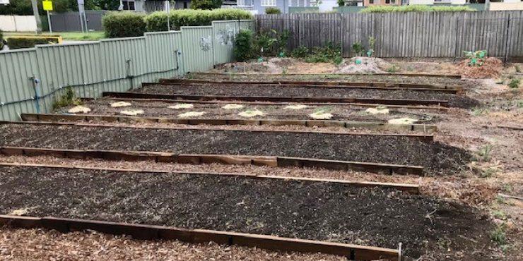 st paul's school community garden